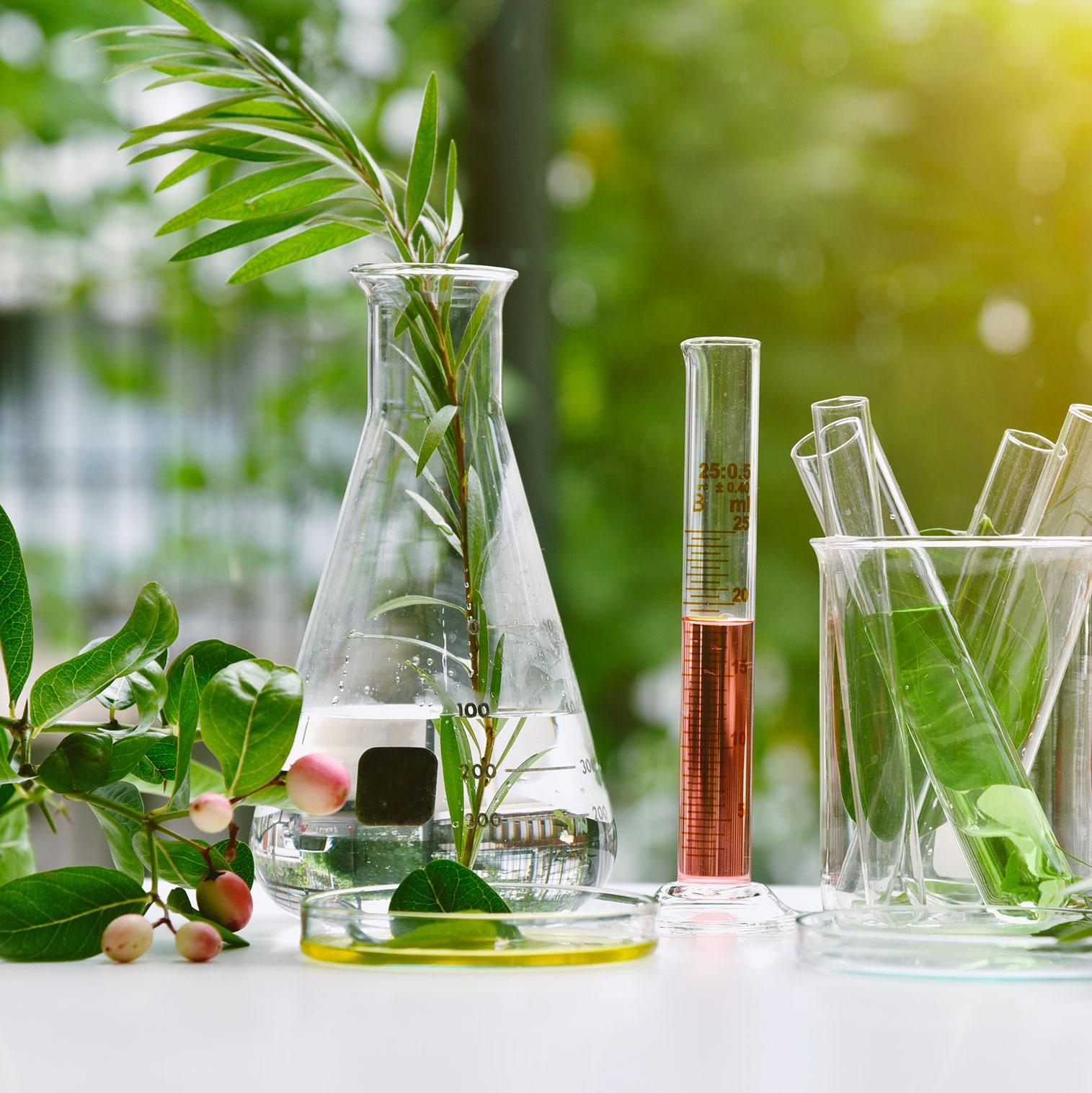 Selenia Italia punta all'eccellenza e ad una produzione interamente Made in Italy testata clinicamente nei migliori istituti di bellezza.